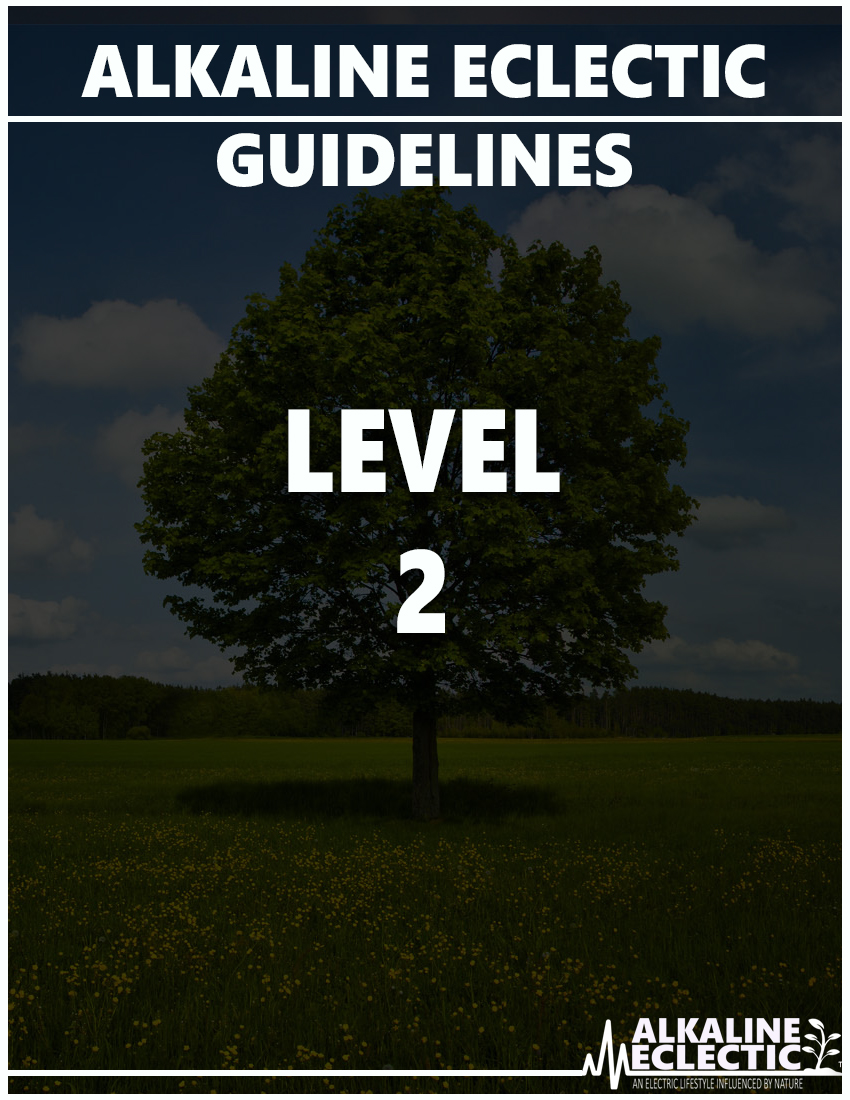 AE GUIDELINES LEVEL 2
