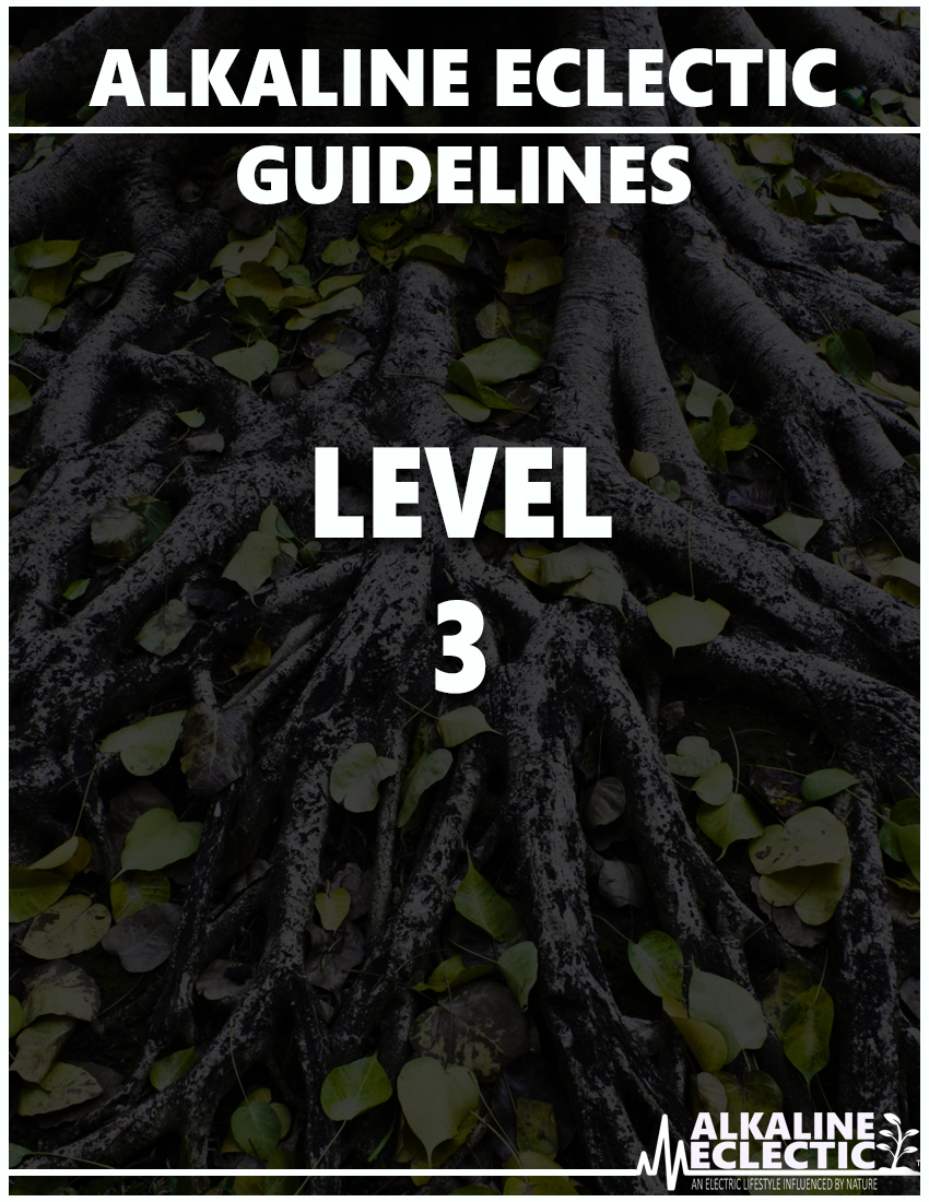 AE GUIDELINES LEVEL 3